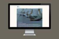 YCH_Screen_3-1